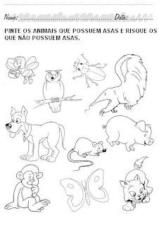 Atividades Educação Infantil para Imprimir - Pinte os animais que possuem asas