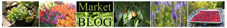 market blog collage 1