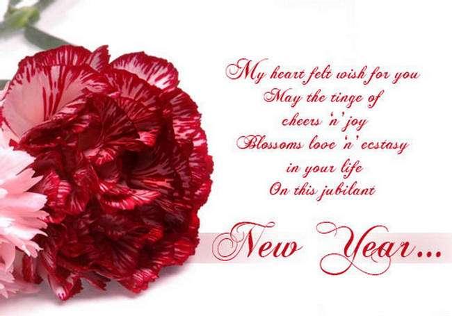 aapki aankho ke sapne sach ho jaye aapke sab armaan pure ho jaaye yahi dua hai hamari ki naya saal aapke liye khushnuma ho jaye happy new year