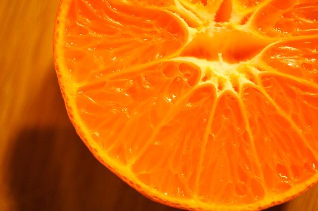 close up picture orange