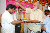 Krishnamma Kalipindi Iddarini movie launch-thumbnail-10