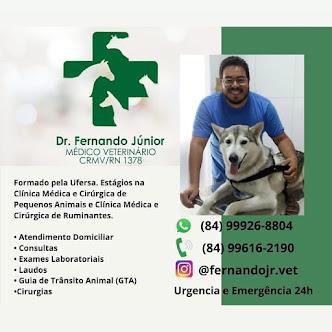 Campo Grande e Região Oeste agora conta com atendimento Veterinário do Dr. Fernando Júnior