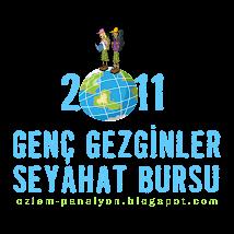 Genç Gezginler Seyahat Bursu-2011
