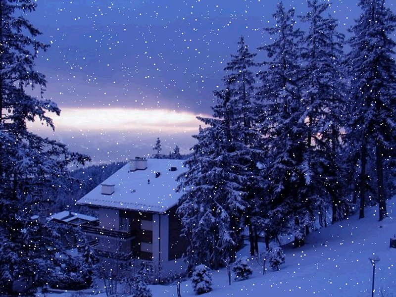 Download most beautiful real snowfall in winters hd wallpapers Beautiful snowfall pictures