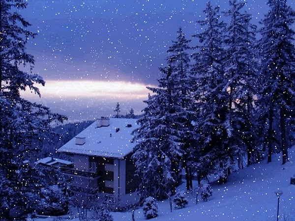 Snowfall in winter wallpapers