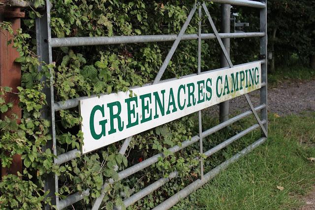 Greenacres Camping // 76sunflowers