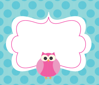 Cute Owl Labels For School Supplies