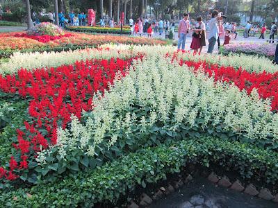Hình ảnh đẹp hoa xuân Tao đàn 2013