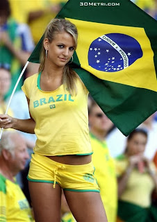 Brazil World Cup Fan