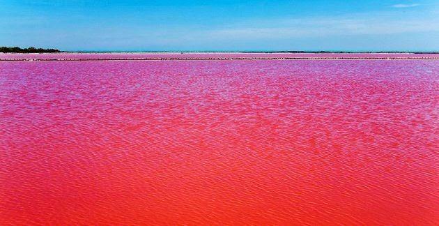 نهر يانغتسي بالصين: أطول أنهار آسيا يتحول إلى لون أحمر كالدم