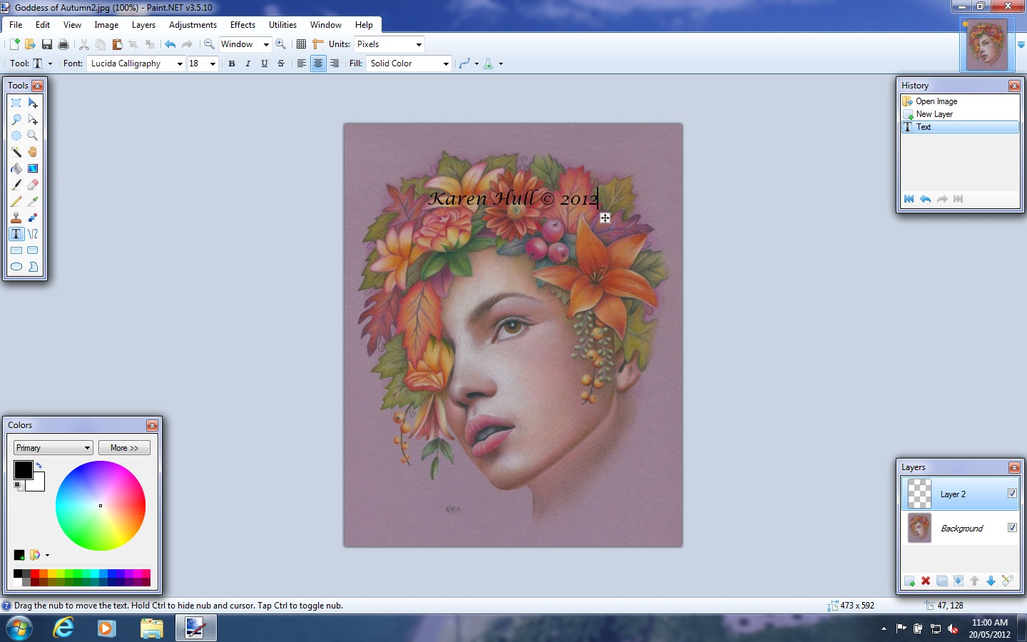 Karen Hull Art How To Place A Watermark On Your Artwork Image