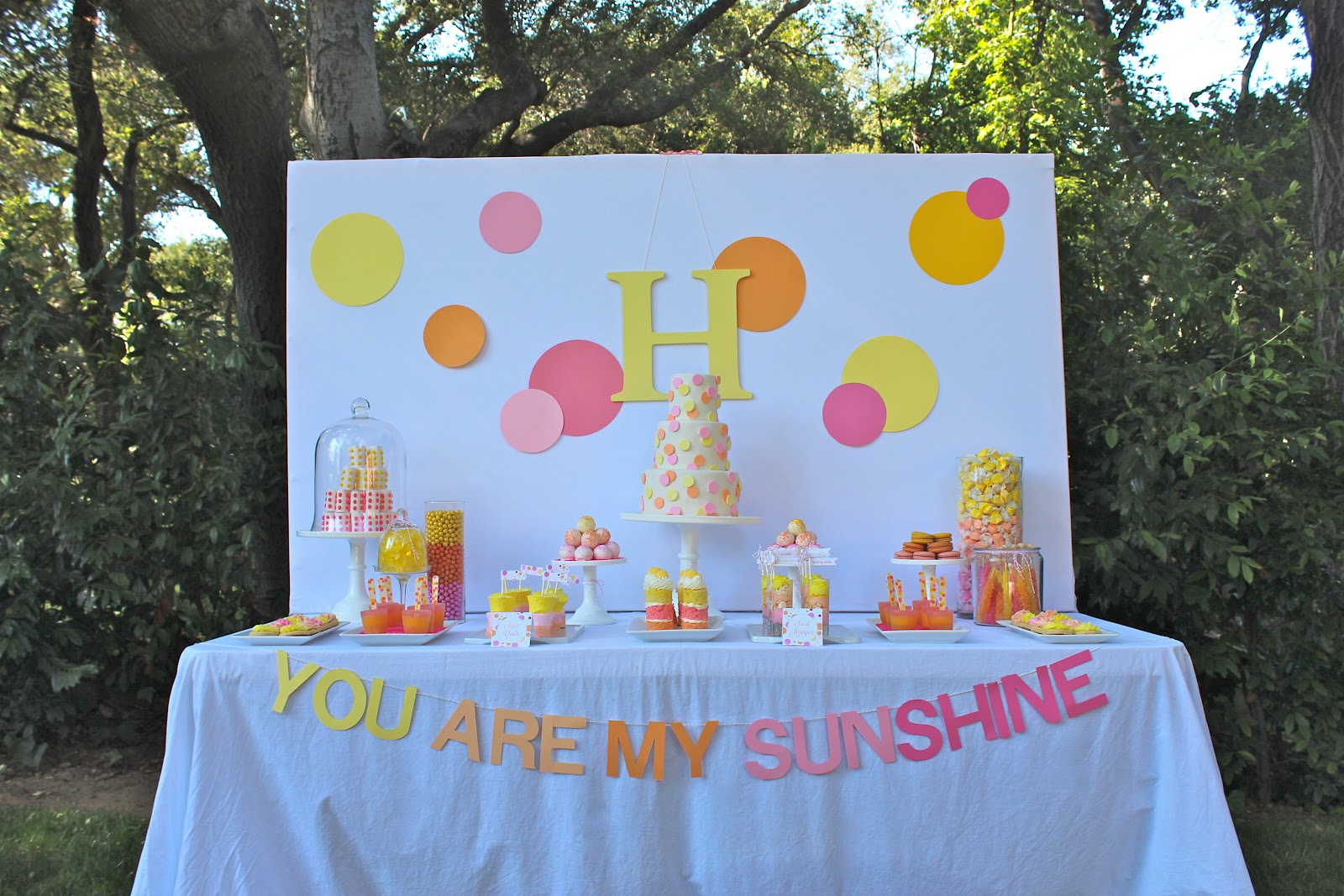 You Are My Sunshine Party New In Bloom