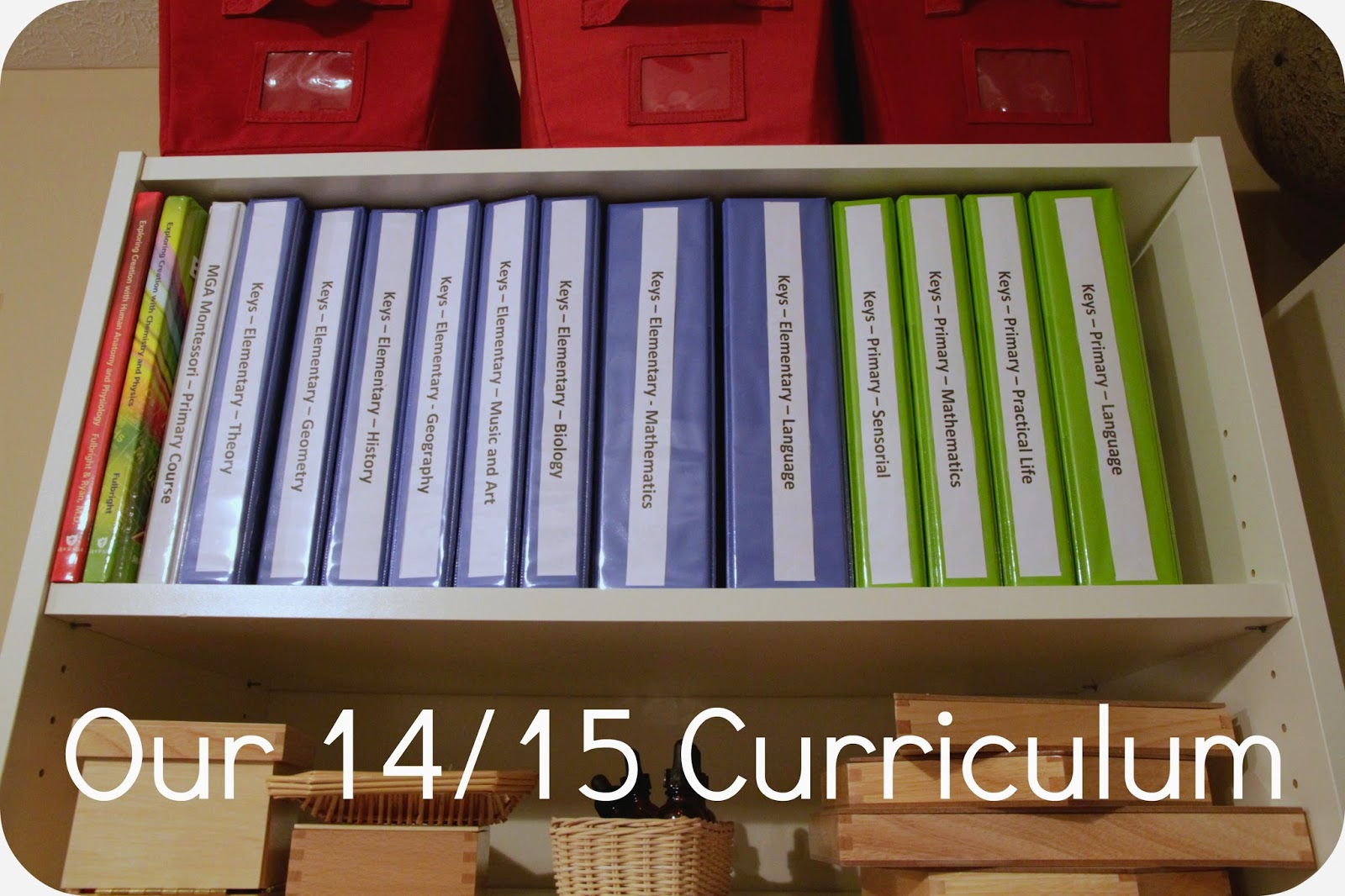 The Overdue 14/15 Curriculum Post