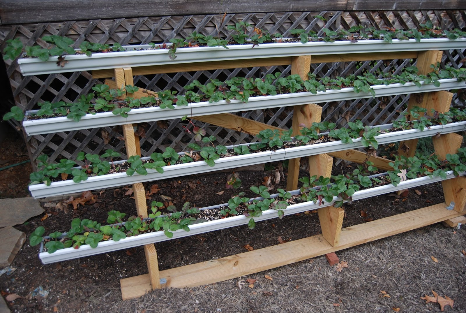 the garden is basically four gutters with caps on both ends mounted on a set of stair stringers and then given a frame to add stability - Garden Hacks