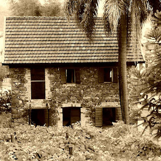 Museu Casa de Pedra, Caxias do Sul. Vista lateral do sobrado de pedra, com palmeira ao lado.