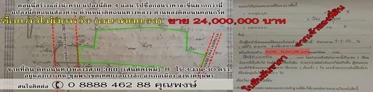 ขายที่ดินถนนตัดใหม่ 8 ไร่ 3 งาน 30 ตรว..อยู่หลังการเคหะชุมพร เทศบาลบางลึก อำเภอเมือง จังหวัดชุมพร