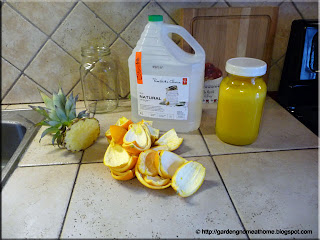 ingredients for orange cleaner