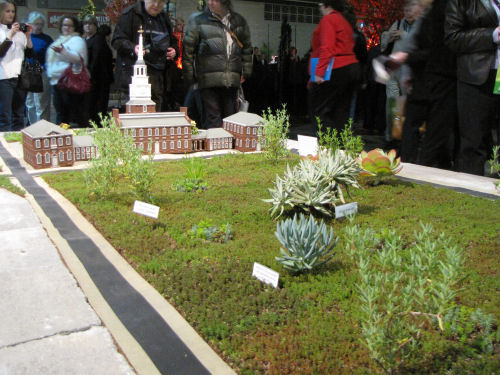 Philadelphia model with succulent plants