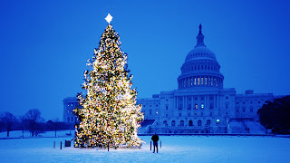 Christmas Tree Washington Winter Landscape Wallpaper