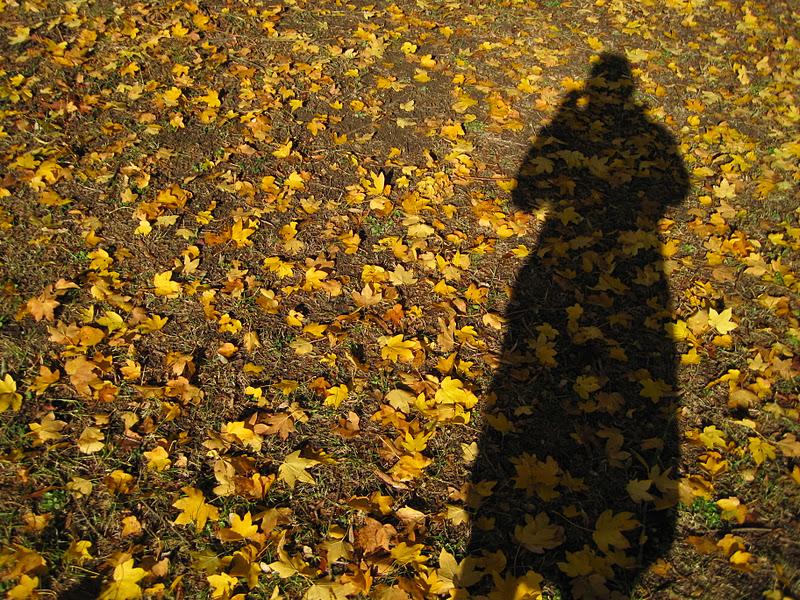 Keats Autumn: Ric-Rac: To Autumn