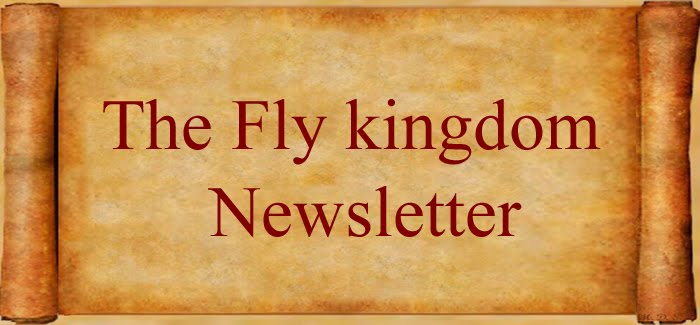 The Fly Kingdom Newsletter
