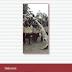 Simha Arom (a cura di Maurizio Agamennone e Serena Facci), Le Ragioni Della Musica. Scritture Di Musicologia Africanista, LIM 2014, pp. 18+237, Euro 25,00 con Cd Audio e Dvd