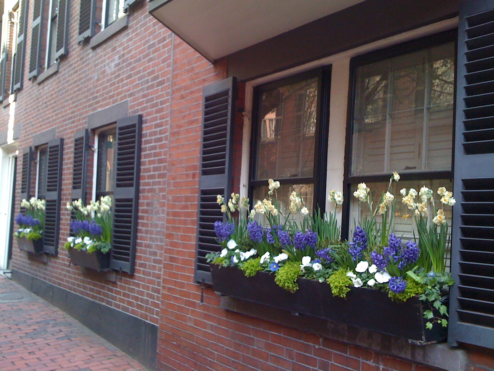 Journey Home Interior Design For Canberra Window Box