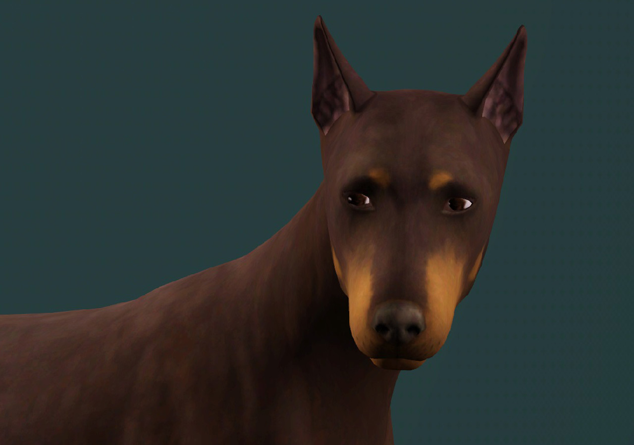 my sims 3 blog two doberman pinschers by pharaohhound