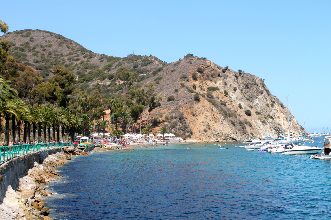 Download this Catalina Island Dwellable picture