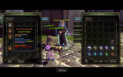 Dragon Nest - Epic Skill Plate Pouch