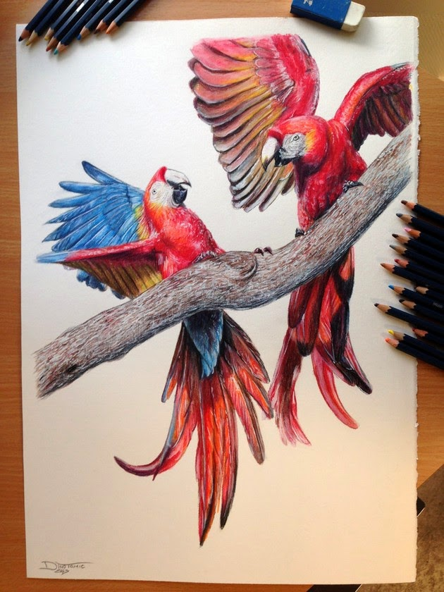 color pencil portraits by Dino Tomic