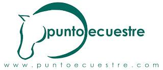 www.puntoecuestre.com