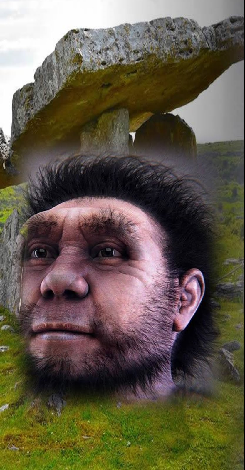 Homo Erectus pudieron comunicarse antes de lo que se cree