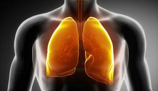 Waspada, 4 Tanda Paru-paru Anda dalam Bahaya