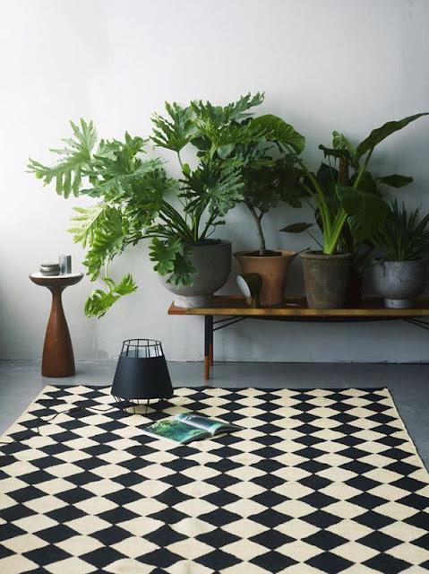 grønne planter og kunst side om side på en træbænk