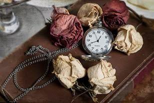Fleurs du mal.Inspirada en la época victoriana