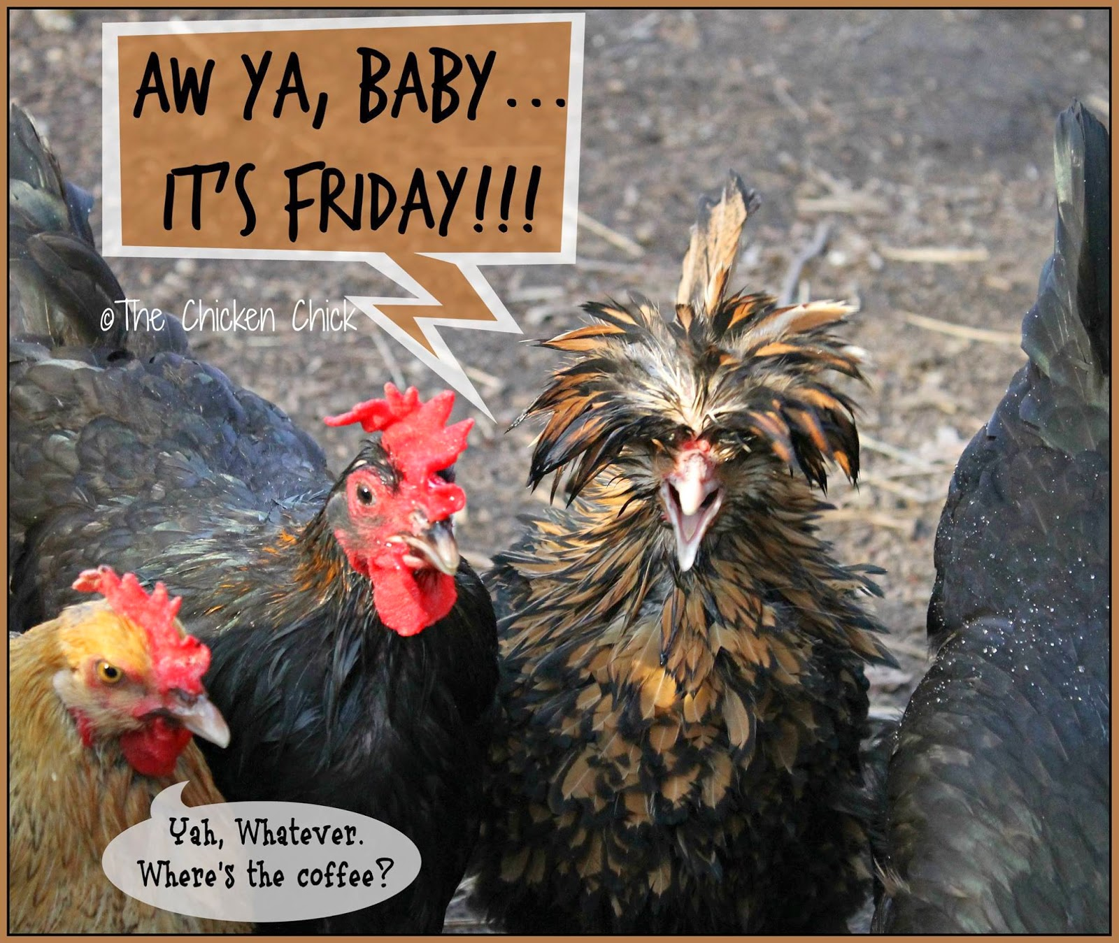 AW YA, BABY...IT'S FRIDAY!!!