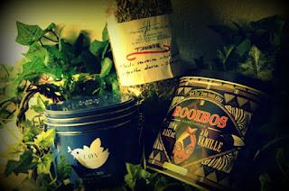 Mon thé aux fleurs et aux plantes