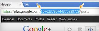vanity url google+