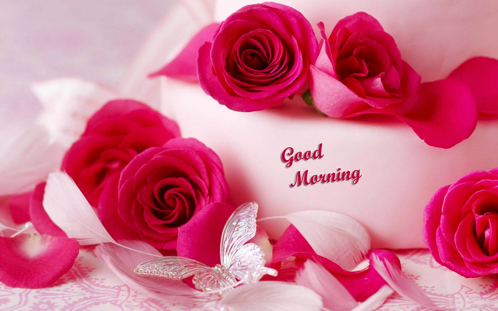 Love Romantic Good Morning Hd Wallpaper : Lovely and Beautiful Good Morning Wallpapers ~ Allfreshwallpaper