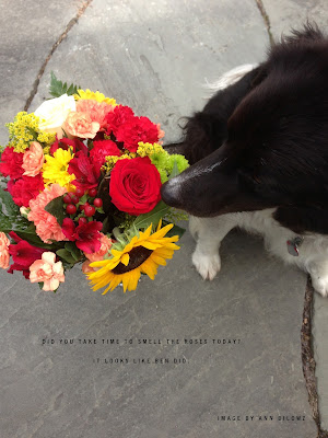 Ben sniffing a bouquet of flowers
