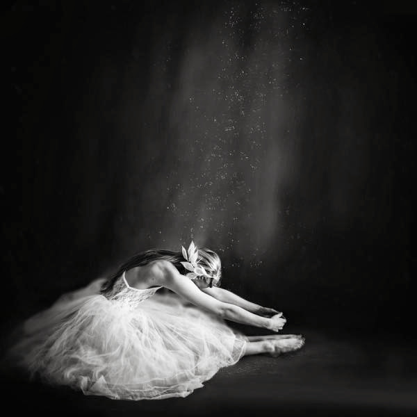 Stunning Photography by Vanessa Paxton