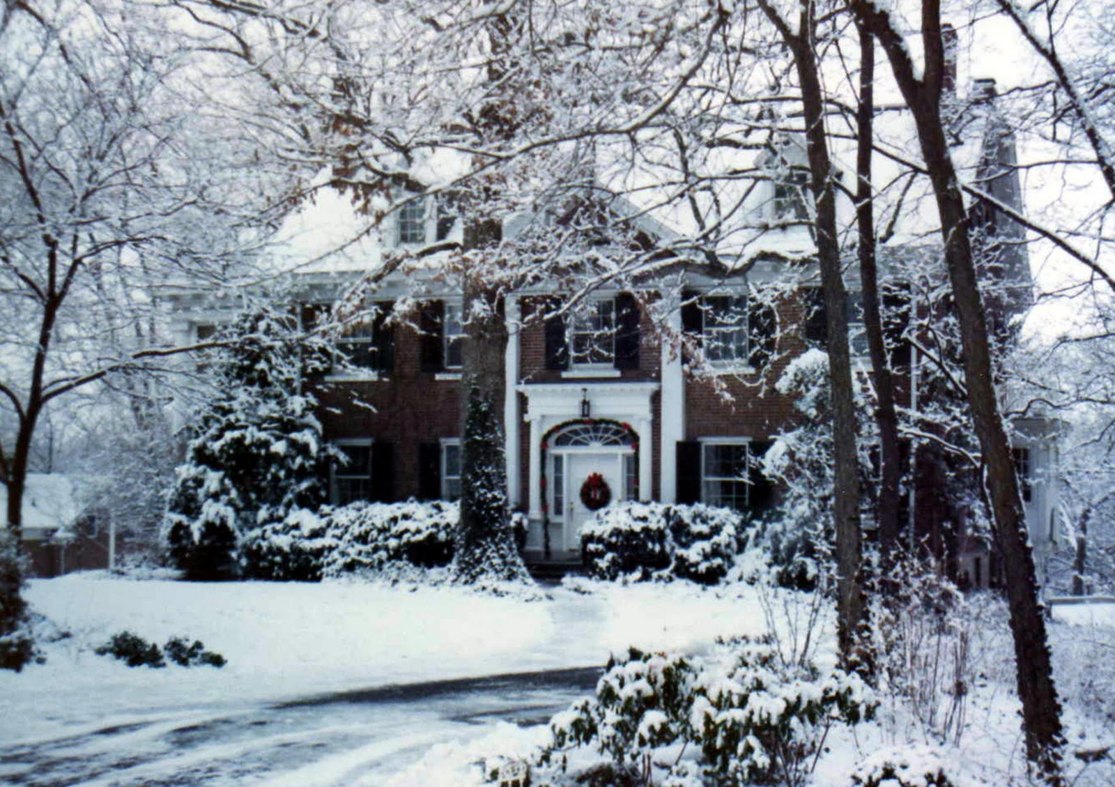 http://2.bp.blogspot.com/-YOWqsqUcFaA/TxG1MVpZWoI/AAAAAAAAJYI/Q0HEj9lYNaE/s1600/snow+tree_001.jpg