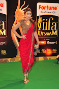 Shriya Sizzling in saree at IIFA Utsavam-thumbnail-20