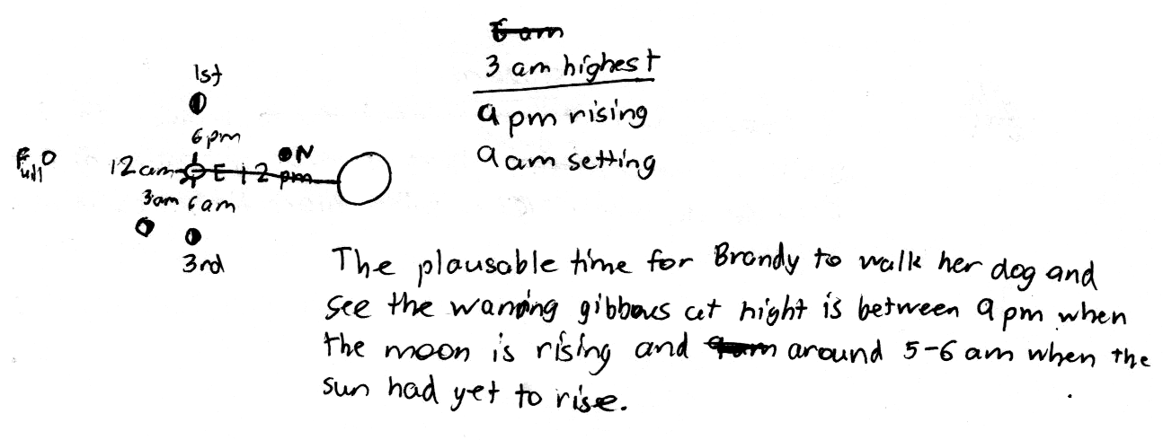 lunar phases essay Background essay it goes through a cycle of phases — changes in its despite this division into five stages, the phases of the moon are in fact.