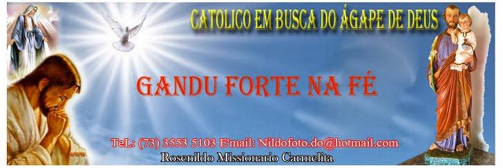 Catolico em Ação