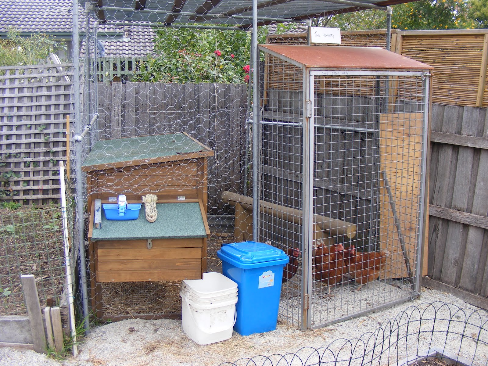 backyard self sufficiency 13 all things chooky or how to build
