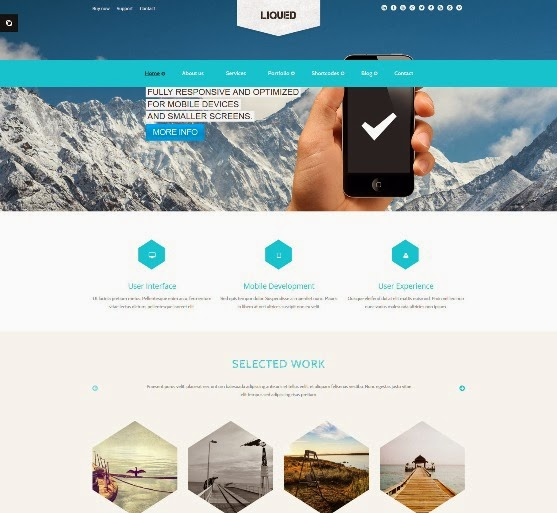 Liqued Responsive Business Theme