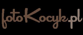Fotokocyk