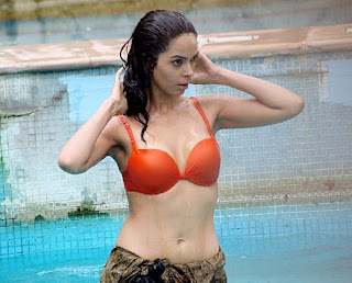 Mallika Sherawat wearing orange bikini in Double Dhamaal